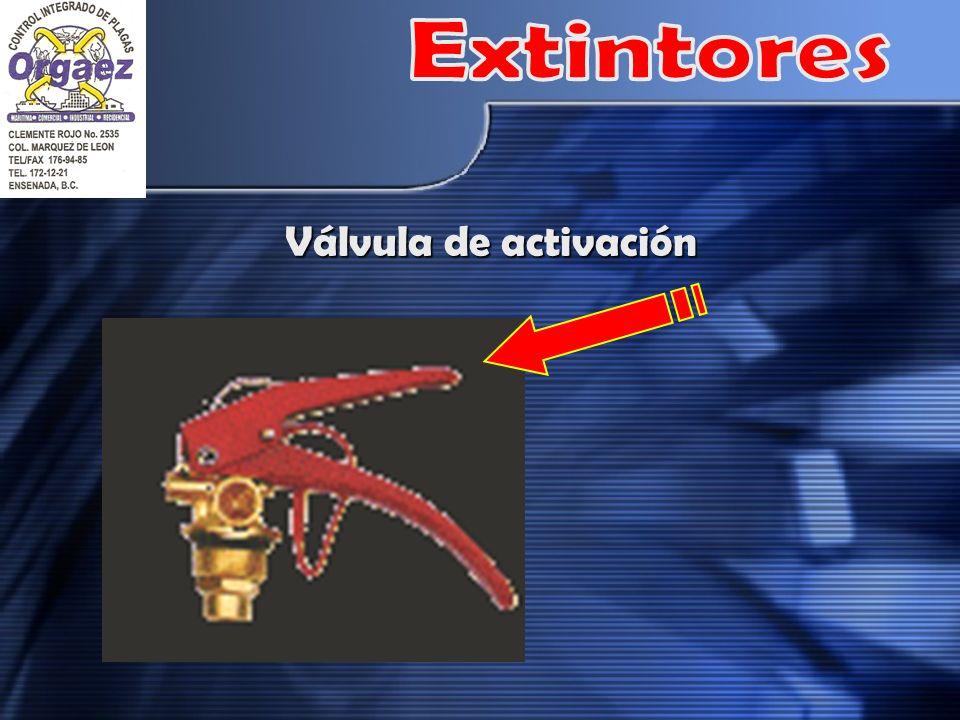 Válvula de activación