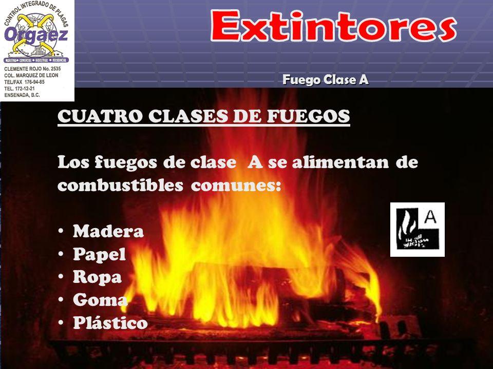 Fuego Clase A CUATRO CLASES DE FUEGOS Los fuegos de clase A se alimentan de combustibles comunes: Madera Papel Ropa Goma Plástico