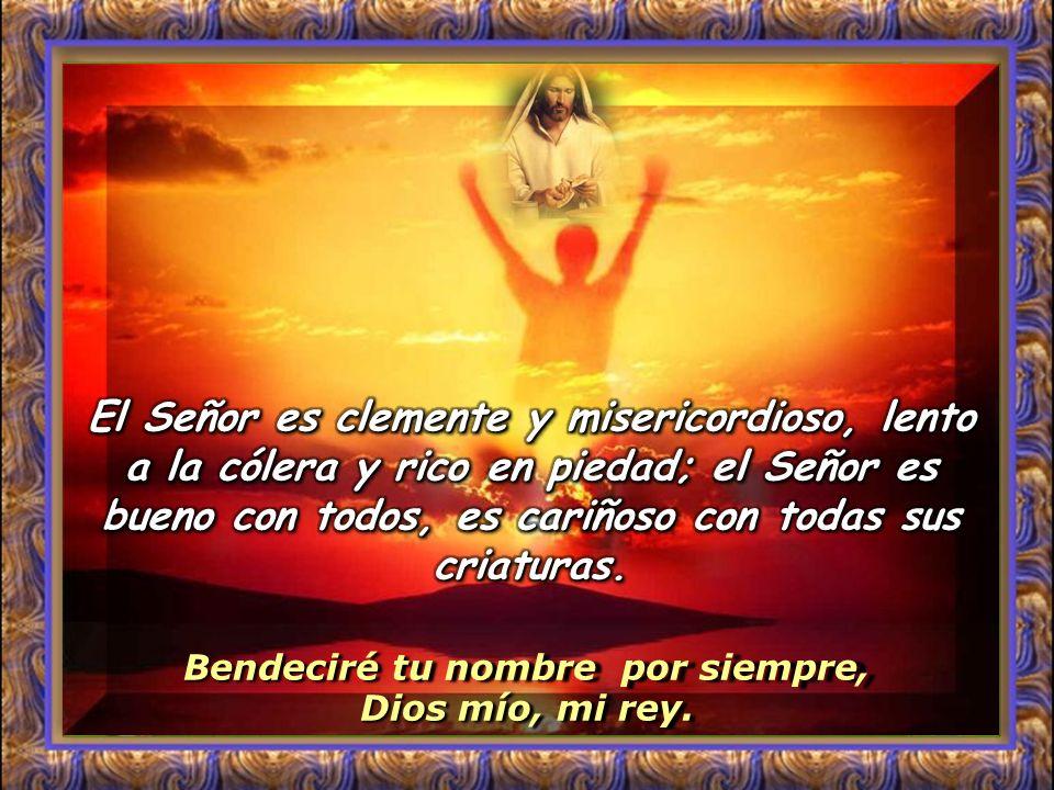 Bendeciré tu nombre por siempre, Dios mío, mi rey. Salmo 144