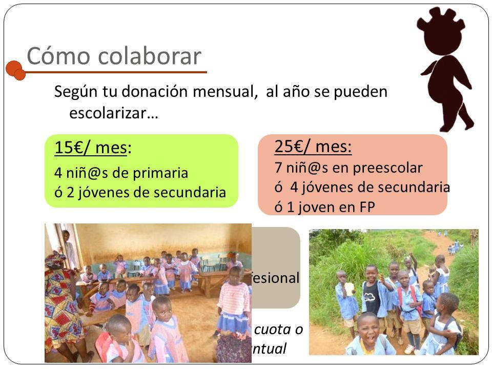 Colegios incluidos en el Programa The Morning Star Catholic Primary School:
