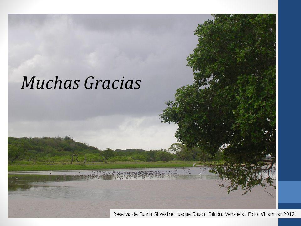 Reserva de Fuana Silvestre Hueque-Sauca Falcón. Venzuela. Foto: Villamizar 2012 Muchas Gracias