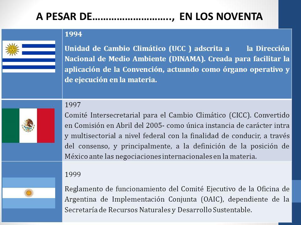 A PESAR DE……………………….., EN LOS NOVENTA 1994 Unidad de Cambio Climático (UCC ) adscrita a la Dirección Nacional de Medio Ambiente (DINAMA). Creada para