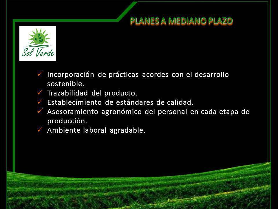 Incorporación de prácticas acordes con el desarrollo sostenible. Trazabilidad del producto. Establecimiento de estándares de calidad. Asesoramiento ag