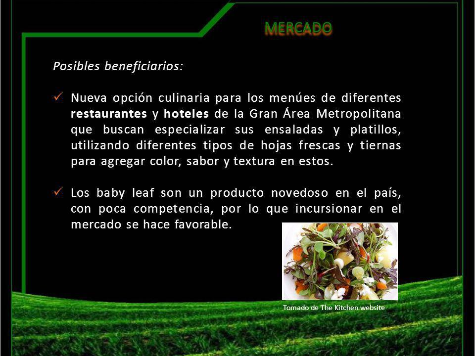 MERCADOMERCADO Posibles beneficiarios: Nueva opción culinaria para los menúes de diferentes restaurantes y hoteles de la Gran Área Metropolitana que b