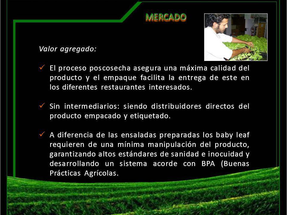 MERCADO MERCADO Valor agregado: El proceso poscosecha asegura una máxima calidad del producto y el empaque facilita la entrega de este en los diferent