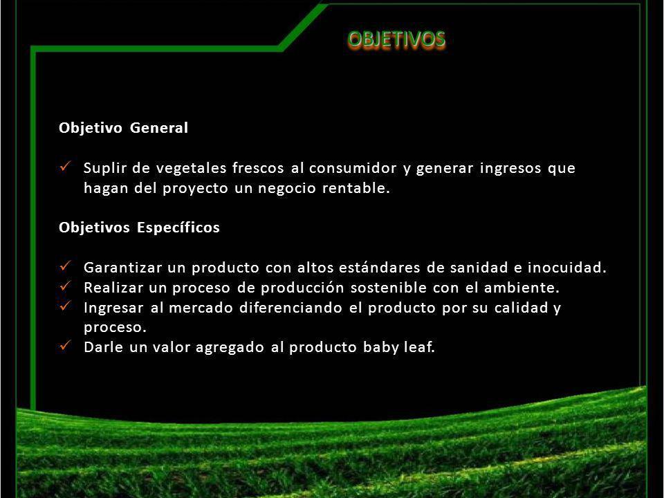OBJETIVOSOBJETIVOS Objetivo General Suplir de vegetales frescos al consumidor y generar ingresos que hagan del proyecto un negocio rentable. Objetivos