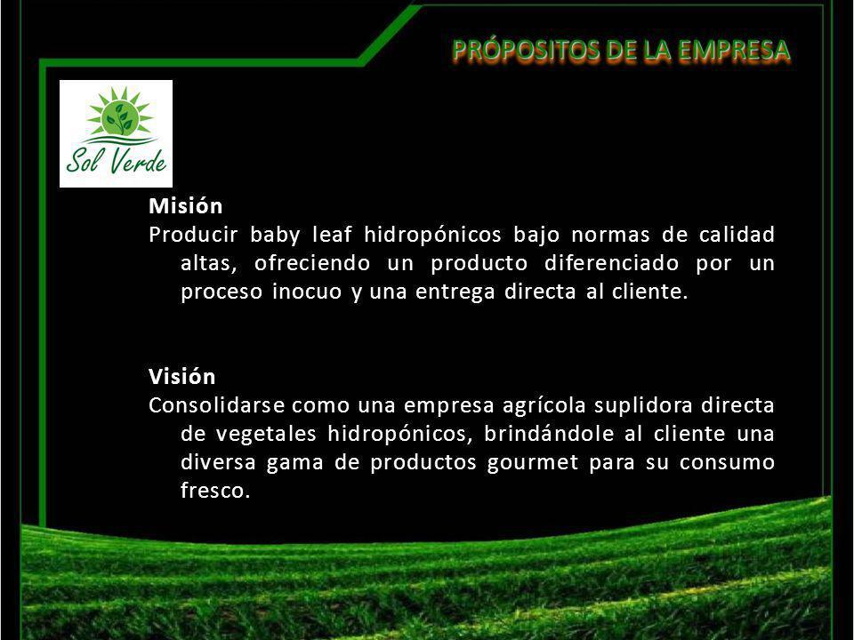 PRÓPOSITOS DE LA EMPRESA Misión Producir baby leaf hidropónicos bajo normas de calidad altas, ofreciendo un producto diferenciado por un proceso inocu
