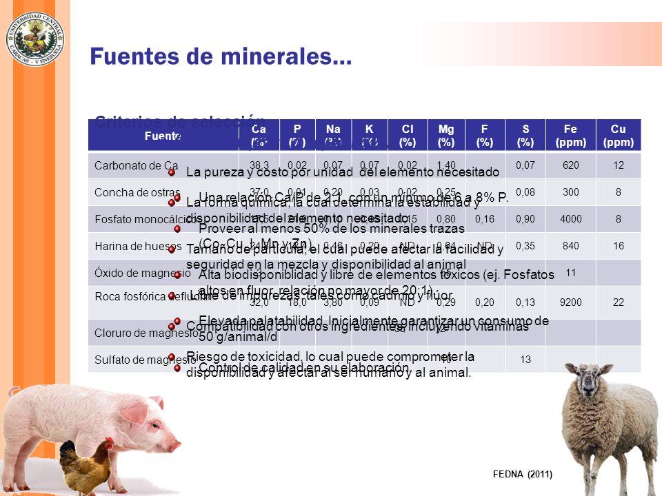 Bach y Devant (2004) Mineral Máximo límite legal (ppm)Concentraciones tóxicas Fe 750500-1000 ppm I 108-50 ppm Co 230 ppm Cu Ovinos: 15 Bovinos: 35 Prerumiantes: 15 Otras especies: 25 Bovinos: 40-100 ppm Terneros: 30 ppm Ovino: 8 ppm Corderos : 38-40 mg/d durante 16-20 semanas Mn 150Bovinos: 500-1000 ppm Zn 150 Bovinos: 300-1000 ppm Terneros: 250 ppm Mo 2,5Bovinos: 3-10 ppm Se 0,4 Bovinos Crónica: 3-40 ppm Aguda: 20 mg/kg peso vivo Toxicidad de Microminerales en rumiantes…