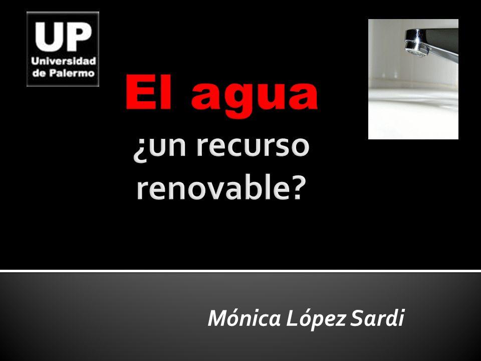 Mónica López Sardi