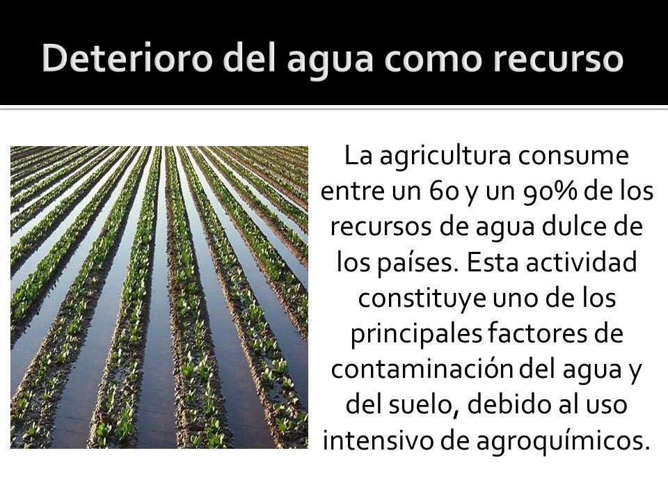La agricultura consume entre un 60 y un 90% de los recursos de agua dulce de los países.