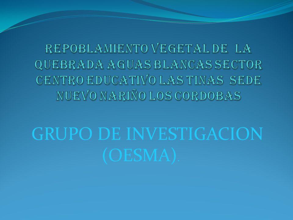 DELIMITACION DEL PROBLEMA TIEMPO: DE AGOSTO A NOVIEMBRE DE 2007 DESCRIPCION DEL PROBLEMA.
