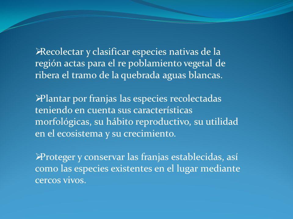 METODOLOGIA POBLACION Y MUESTRA.