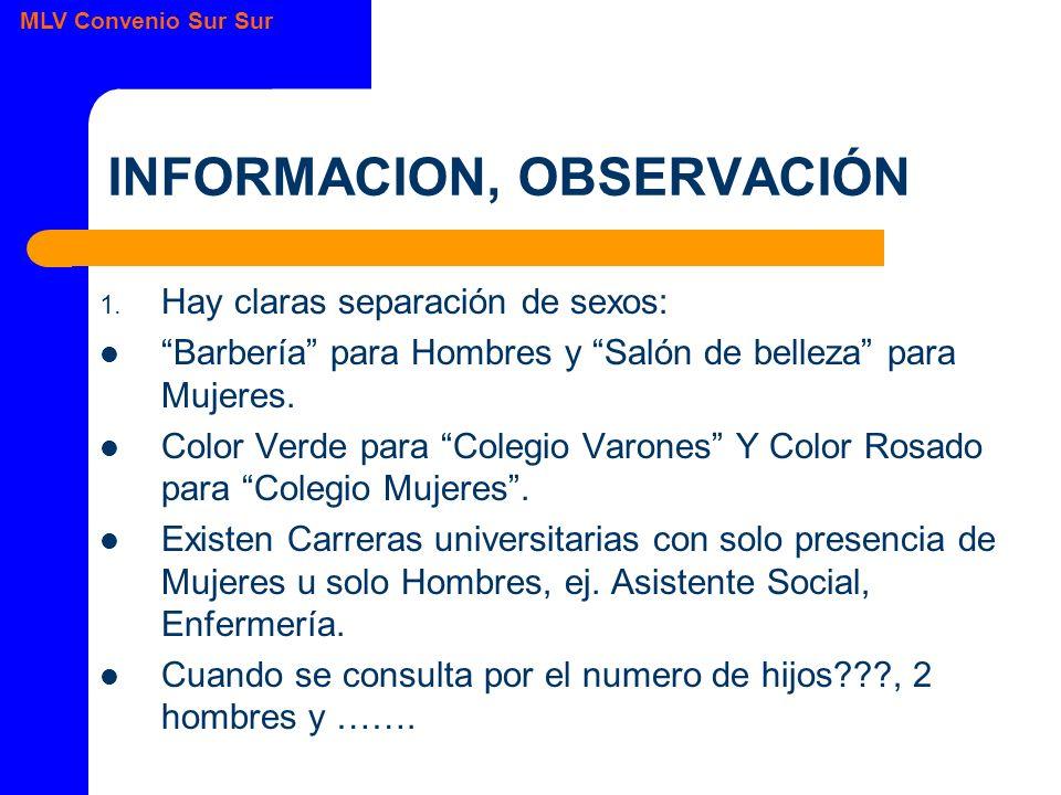 MLV Convenio Sur Sur INFORMACION, OBSERVACIÓN 1.
