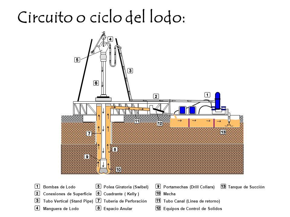 Circuito o ciclo del lodo: Bombas de Lodo Conexiones de Superficie Tubo Vertical (Stand Pipe) Manguera de Lodo Portamechas (Drill Collars) Mecha Tubo