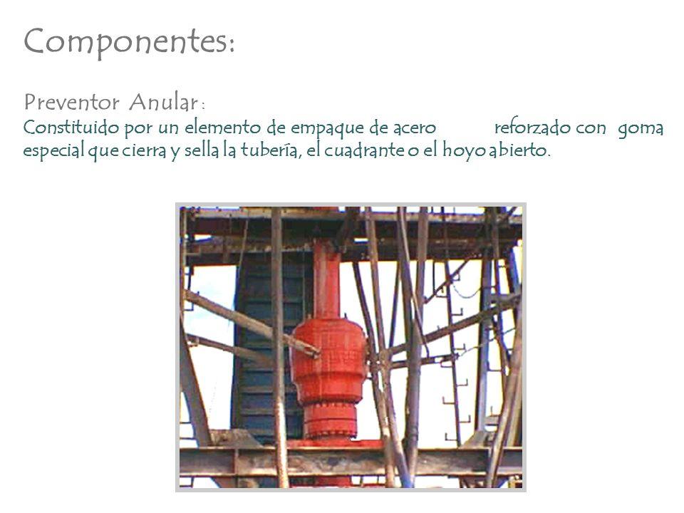 Componentes: Preventor Anular : Constituido por un elemento de empaque de acero reforzado con goma especial que cierra y sella la tubería, el cuadrant