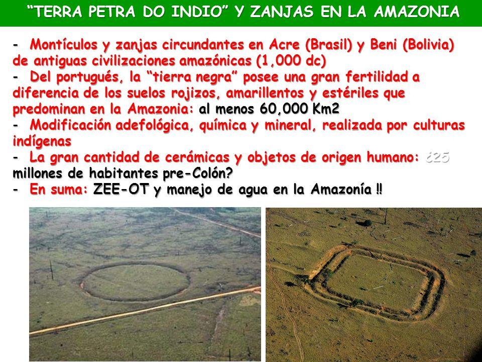- Montículos y zanjas circundantes en Acre (Brasil) y Beni (Bolivia) de antiguas civilizaciones amazónicas (1,000 dc) - Del portugués, la tierra negra