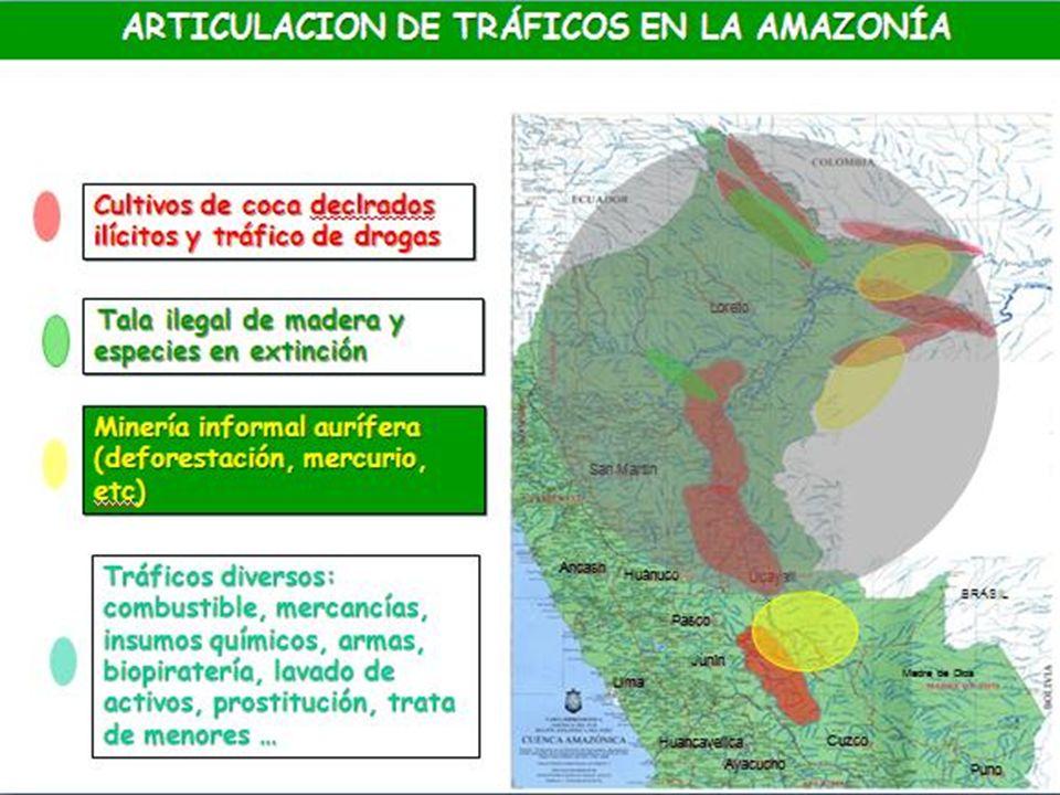 ARTICULACION DE TRÁFICOS EN LA AMAZONÍA