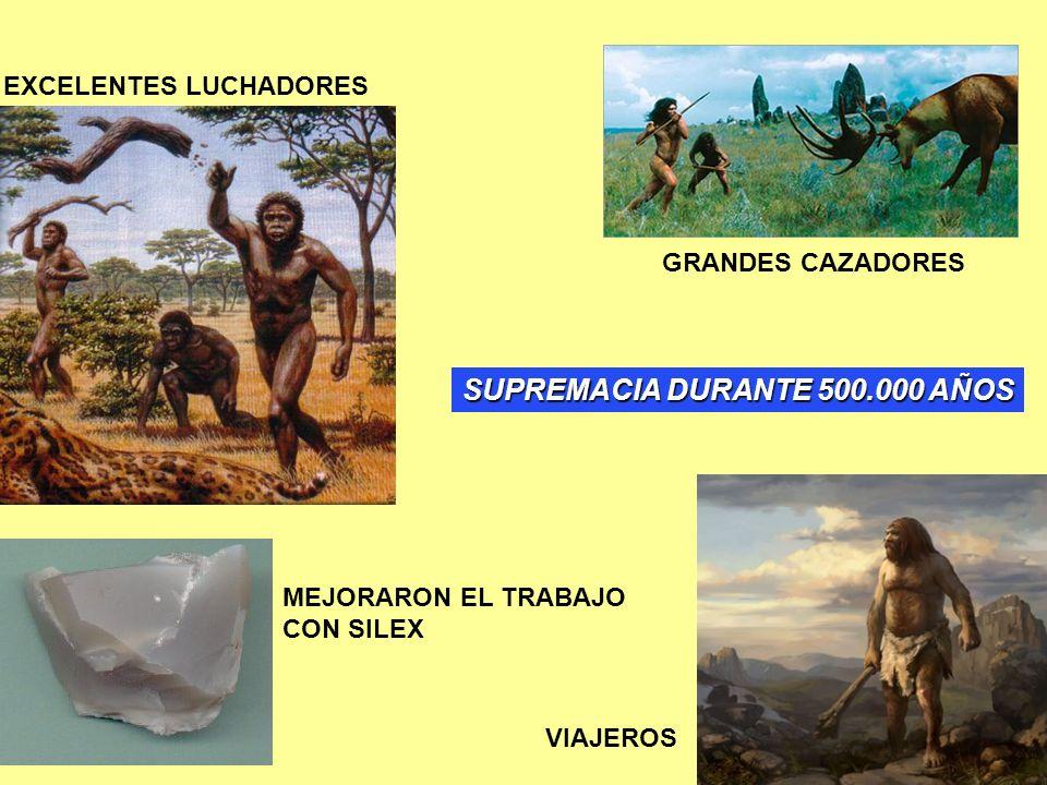 VIAJEROS GRANDES CAZADORES EXCELENTES LUCHADORES MEJORARON EL TRABAJO CON SILEX SUPREMACIA DURANTE 500.000 AÑOS