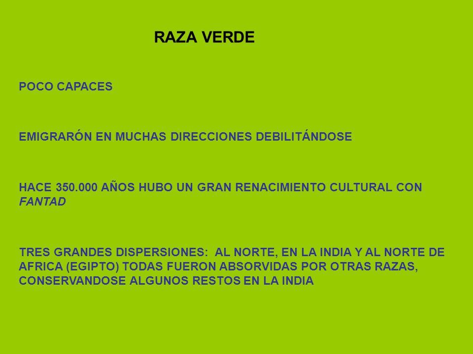 RAZA VERDE POCO CAPACES EMIGRARÓN EN MUCHAS DIRECCIONES DEBILITÁNDOSE HACE 350.000 AÑOS HUBO UN GRAN RENACIMIENTO CULTURAL CON FANTAD TRES GRANDES DIS
