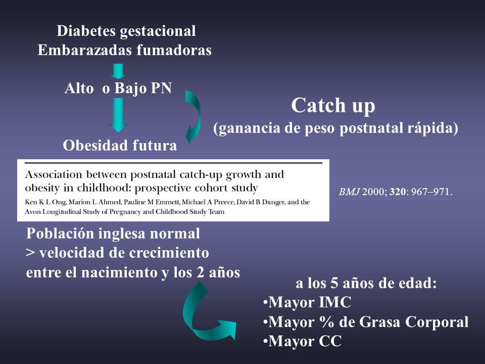 Diabetes gestacional Embarazadas fumadoras Alto o Bajo PN BMJ 2000; 320: 967–971. a los 5 años de edad: Mayor IMC Mayor % de Grasa Corporal Mayor CC O