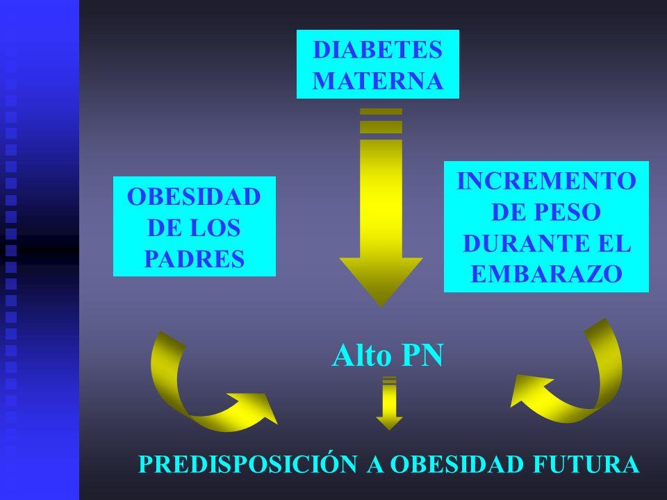 DIABETES MATERNA Alto PN PREDISPOSICIÓN A OBESIDAD FUTURA INCREMENTO DE PESO DURANTE EL EMBARAZO OBESIDAD DE LOS PADRES