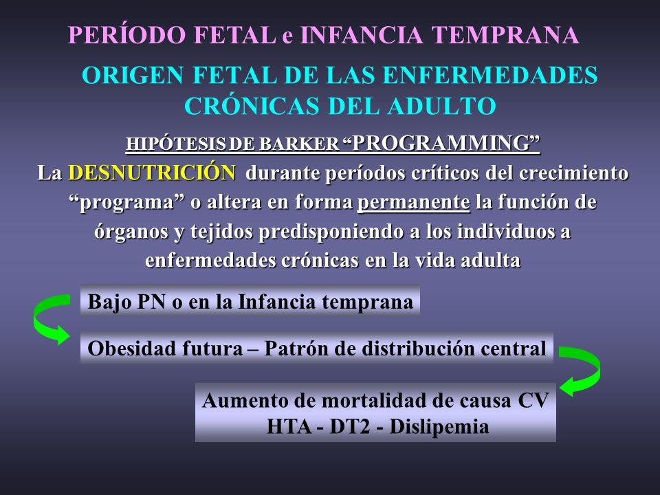 ORIGEN FETAL DE LAS ENFERMEDADES CRÓNICAS DEL ADULTO HIPÓTESIS DE BARKER PROGRAMMING La DESNUTRICIÓN durante períodos críticos del crecimiento program