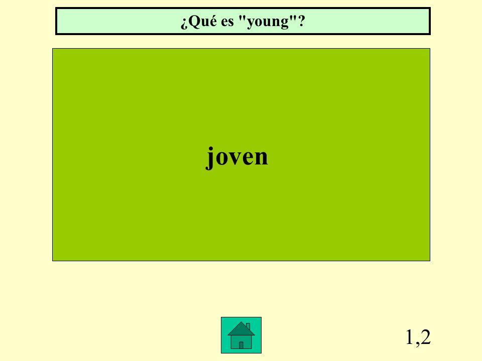 Row 1, Col 1 Nosotros ______ alumnos. ¿Qué es somos?