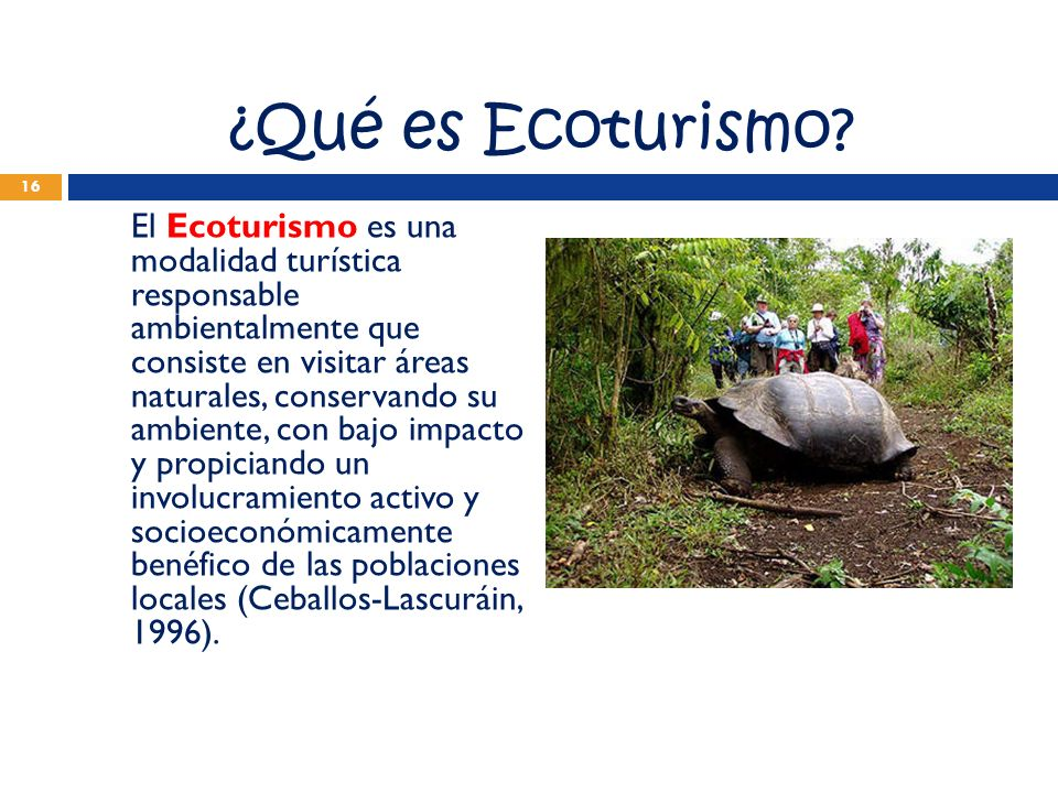 ¿Qué es Ecoturismo? El Ecoturismo es una modalidad turística responsable ambientalmente que consiste en visitar áreas naturales, conservando su ambien