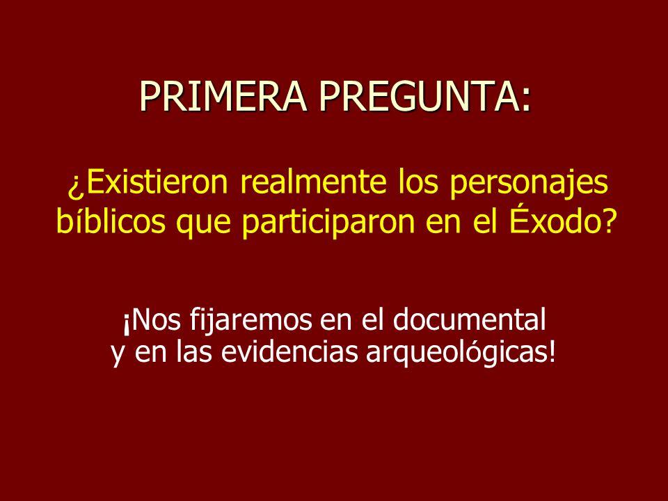 PRIMERA PREGUNTA: ¡ Nos fijaremos en el documental y en las evidencias arqueol ó gicas.