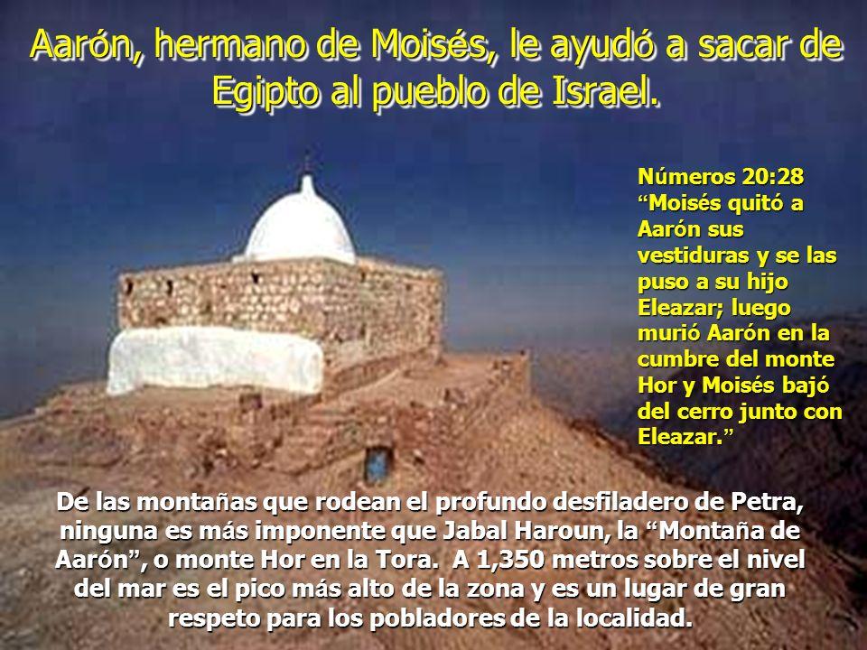 Los iraelís cruzaron el Mar Rojo hacia Arabia Saudita, donde, de acuerdo con estos arqueólogos, se halla el verdadero y kadosh Monte Sinaí.