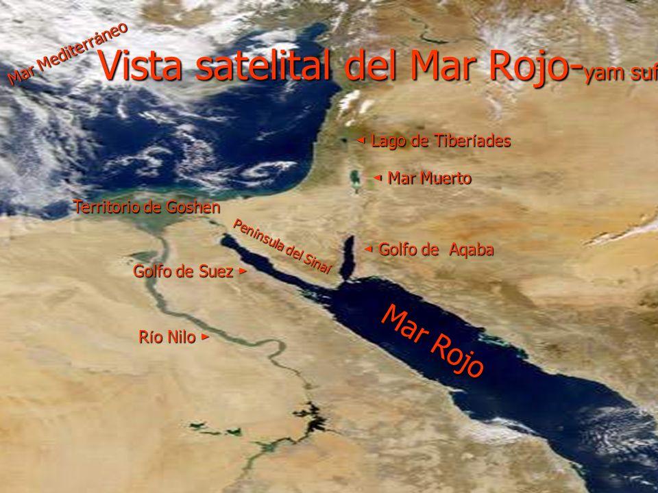 Aar ó n, hermano de Mois é s, le ayud ó a sacar de Egipto al pueblo de Israel.