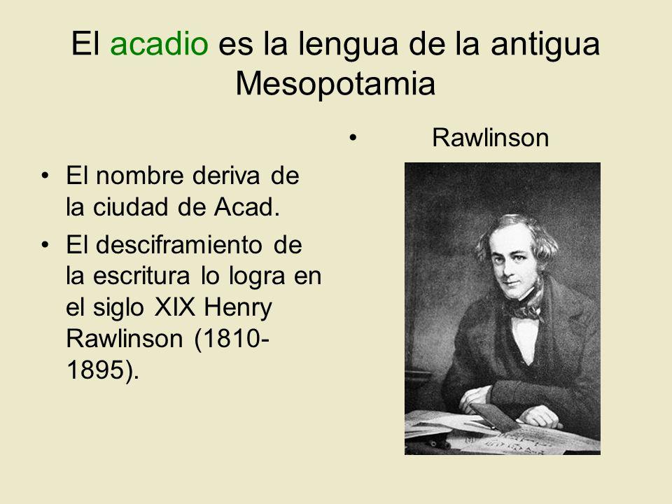 El acadio es la lengua de la antigua Mesopotamia El nombre deriva de la ciudad de Acad. El desciframiento de la escritura lo logra en el siglo XIX Hen