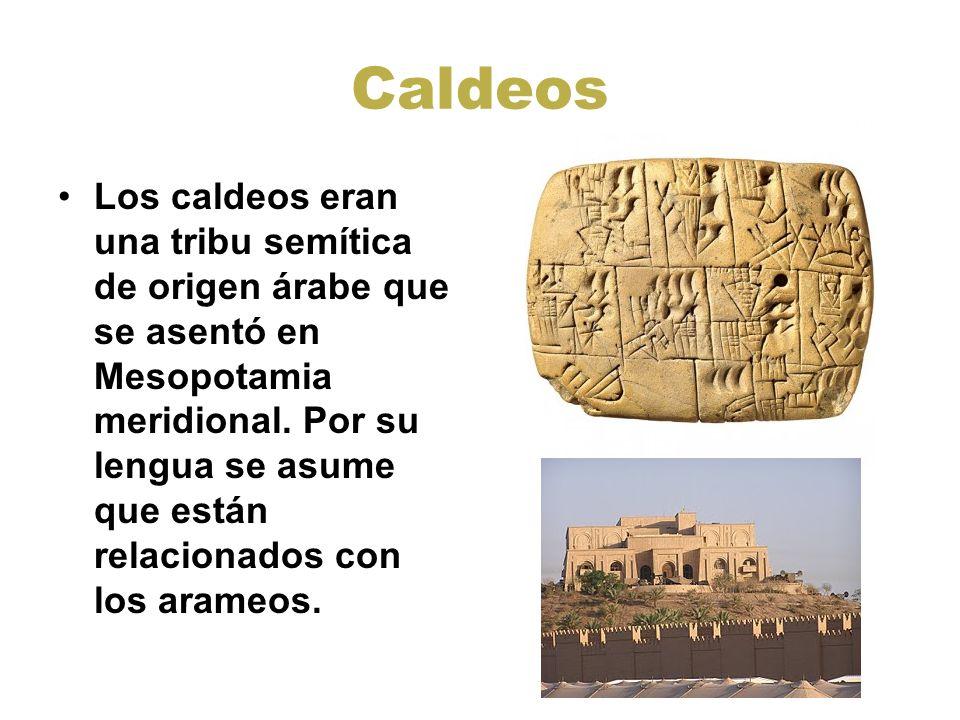 Caldeos Los caldeos eran una tribu semítica de origen árabe que se asentó en Mesopotamia meridional. Por su lengua se asume que están relacionados con