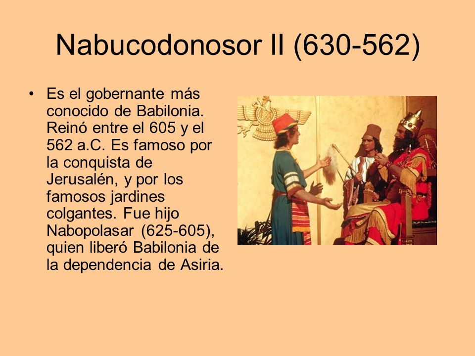 Nabucodonosor II (630-562) Es el gobernante más conocido de Babilonia. Reinó entre el 605 y el 562 a.C. Es famoso por la conquista de Jerusalén, y por