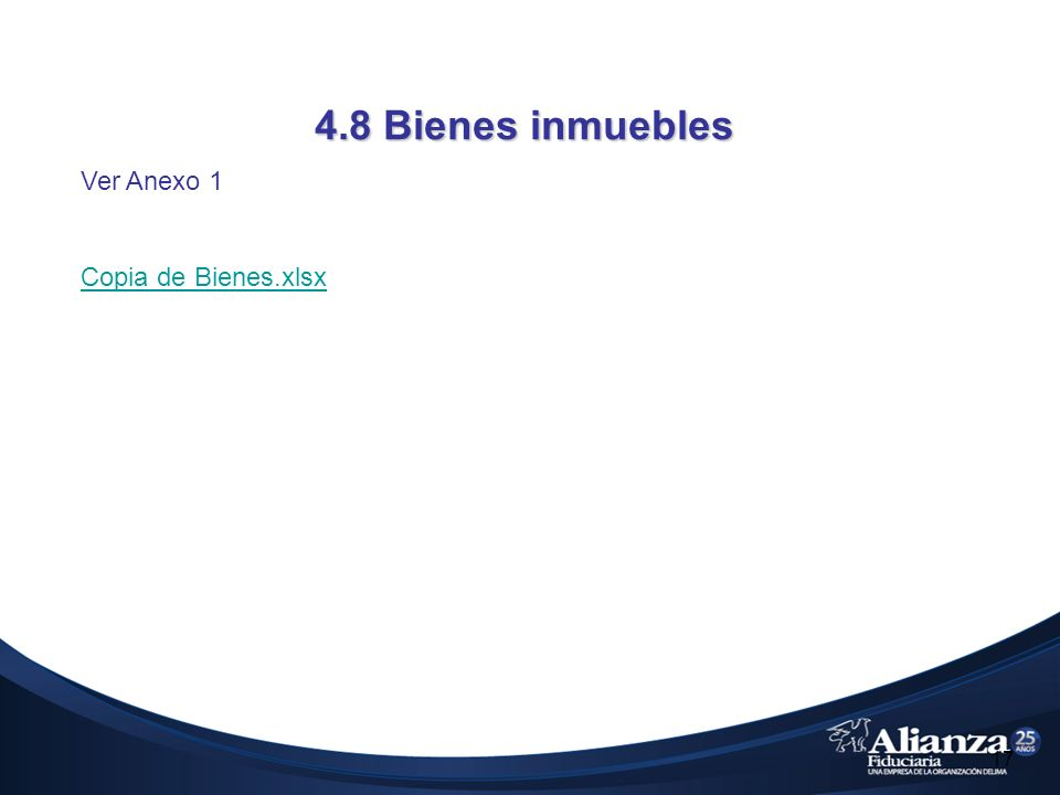 4.8 Bienes inmuebles 17 Ver Anexo 1 Copia de Bienes.xlsx