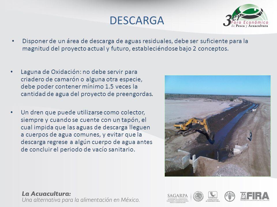 DESCARGA Disponer de un área de descarga de aguas residuales, debe ser suficiente para la magnitud del proyecto actual y futuro, estableciéndose bajo