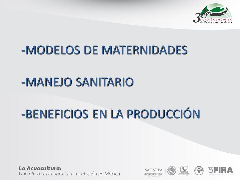 -MODELOS DE MATERNIDADES -MANEJO SANITARIO -BENEFICIOS EN LA PRODUCCIÓN