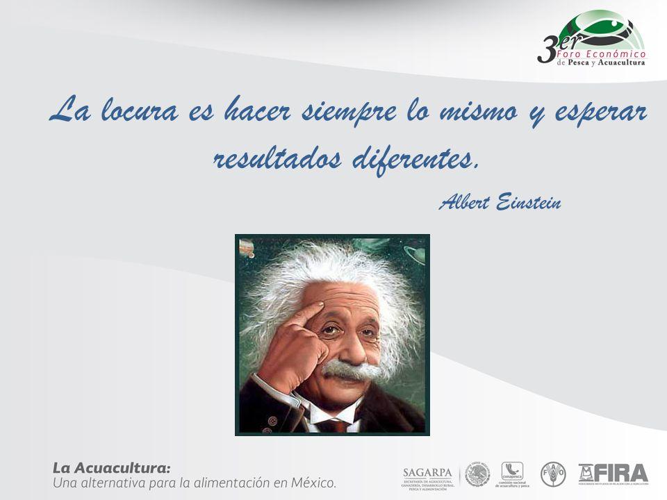 La locura es hacer siempre lo mismo y esperar resultados diferentes. Albert Einstein