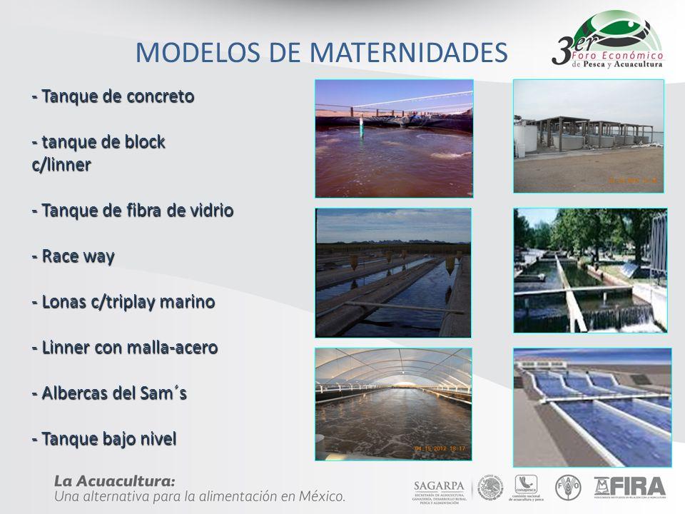DESCARGA Disponer de un área de descarga de aguas residuales, debe ser suficiente para la magnitud del proyecto actual y futuro, estableciéndose bajo 2 conceptos.