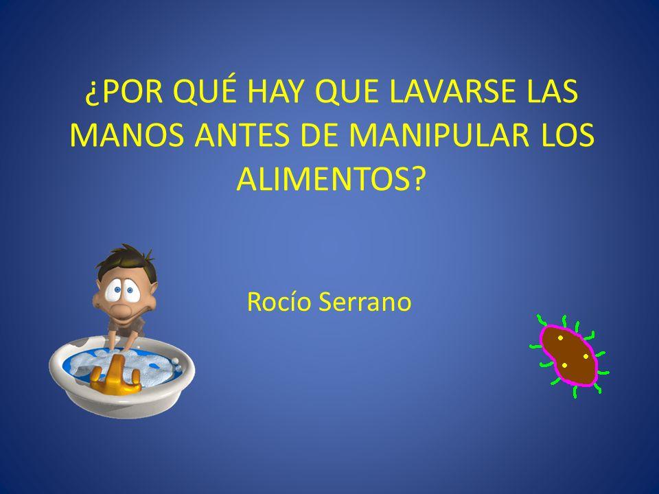 ¿POR QUÉ HAY QUE LAVARSE LAS MANOS ANTES DE MANIPULAR LOS ALIMENTOS? Rocío Serrano
