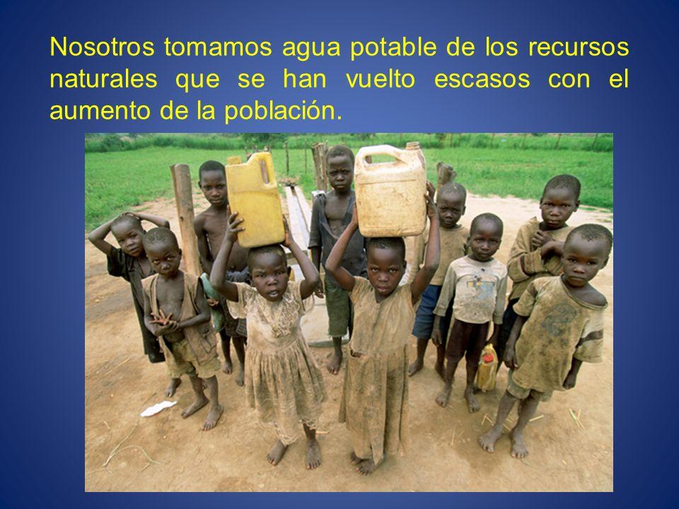 Nosotros tomamos agua potable de los recursos naturales que se han vuelto escasos con el aumento de la población.