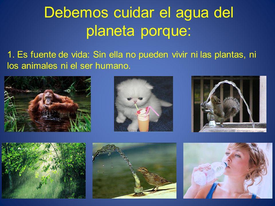 Debemos cuidar el agua del planeta porque: 1. Es fuente de vida: Sin ella no pueden vivir ni las plantas, ni los animales ni el ser humano.