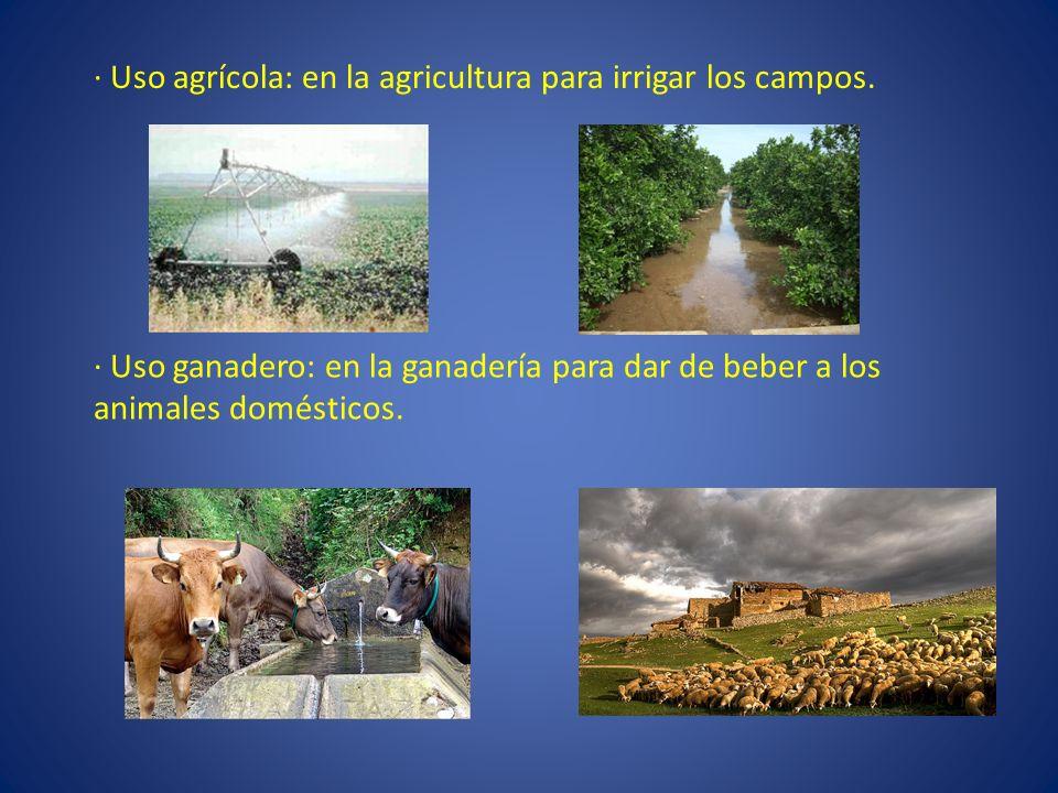 · Uso agrícola: en la agricultura para irrigar los campos. · Uso ganadero: en la ganadería para dar de beber a los animales domésticos.