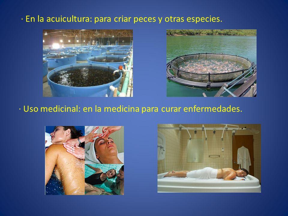 · En la acuicultura: para criar peces y otras especies. · Uso medicinal: en la medicina para curar enfermedades.