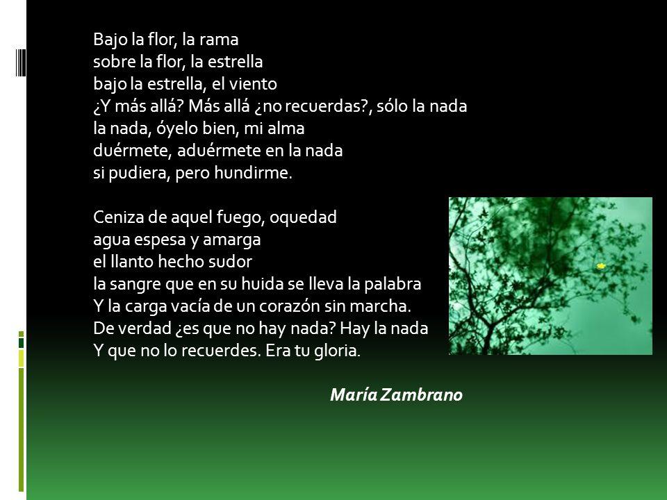MARÍA ZAMBRANO María Zambrano Alarcón nació en Vélez-Málaga el 22 de abril de 1904 y murió el 6 de febrero de 1991 fue una filósofa y ensayista, discípula del famoso filósofo José Ortega y Gasset.