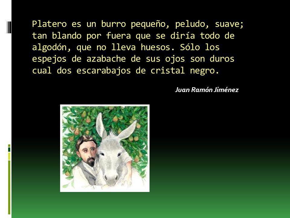 Platero es un burro pequeño, peludo, suave; tan blando por fuera que se diría todo de algodón, que no lleva huesos.