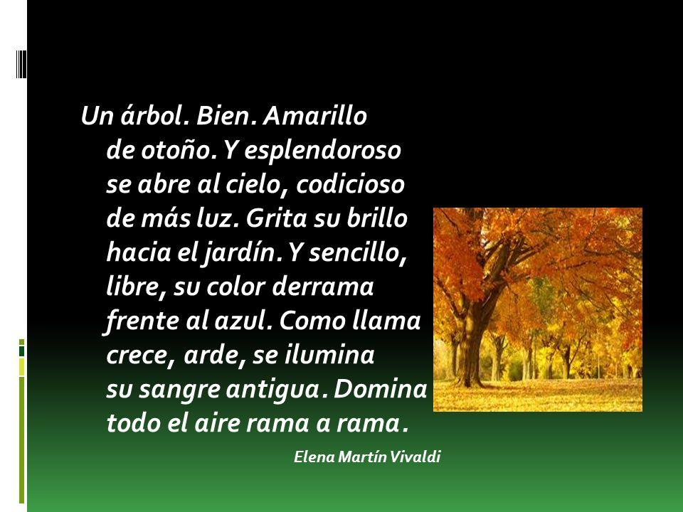 ELENA MARTÍN VIVALDI Elena Martín Vivaldi nació en 1907 (Granada) y murió en 1998.