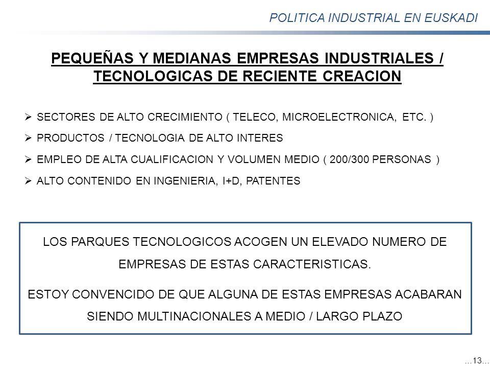 POLITICA INDUSTRIAL EN EUSKADI …13… PEQUEÑAS Y MEDIANAS EMPRESAS INDUSTRIALES / TECNOLOGICAS DE RECIENTE CREACION SECTORES DE ALTO CRECIMIENTO ( TELEC