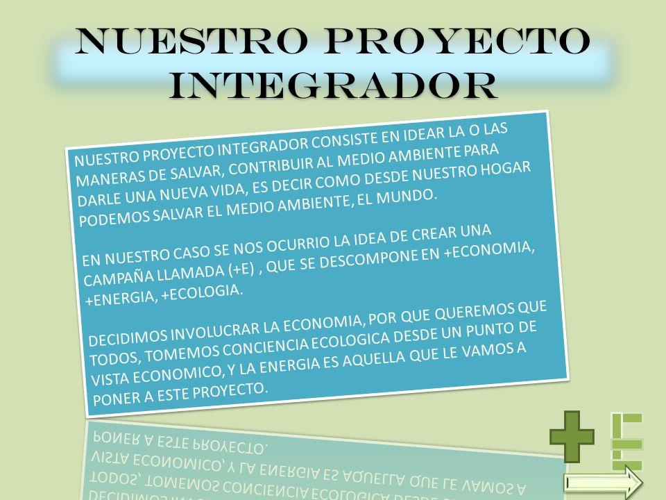 NUESTRO PROYECTO INTEGRADOR