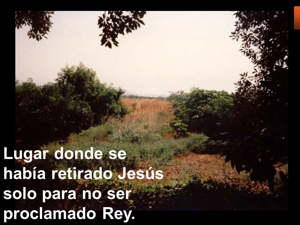 Lugar donde se había retirado Jesús solo para no ser proclamado Rey.